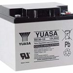 Yuasa Battery, Deep Cycle, Vrla 12V 50AH